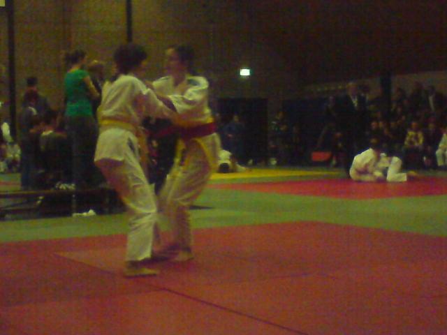 Judo Vianen behaald prijzen in Houten