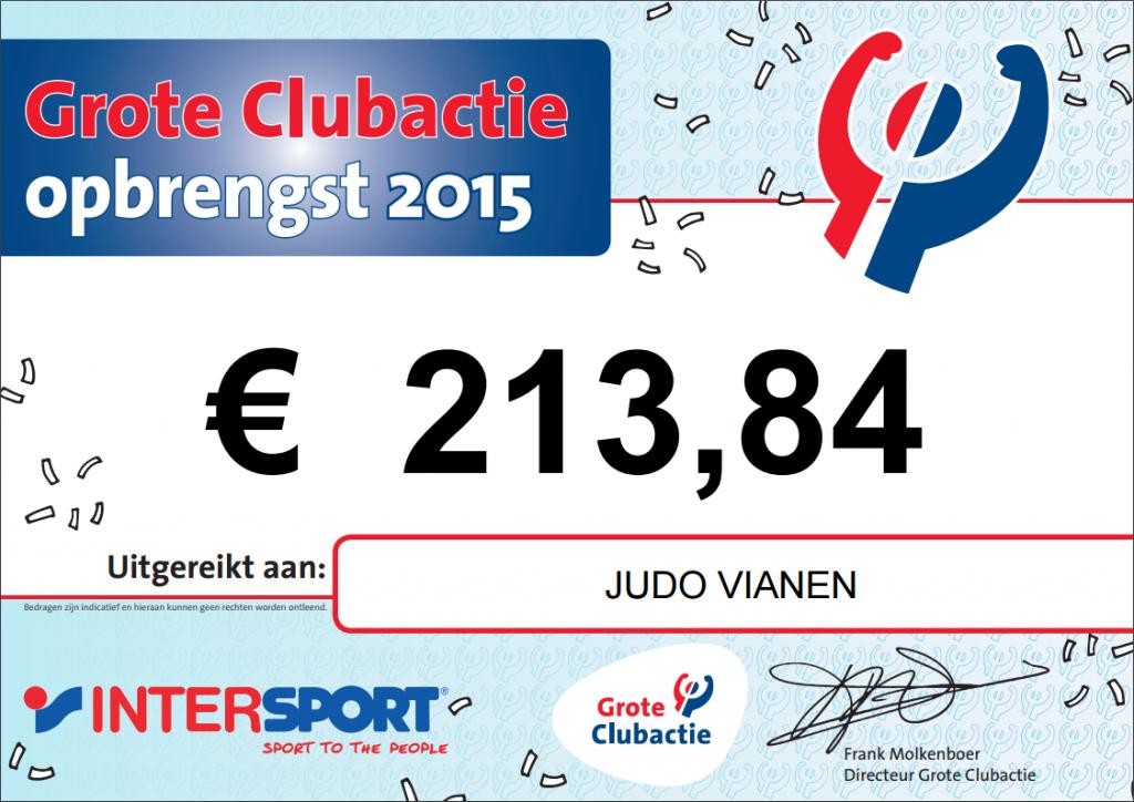 Grote-Clubactie-2015-JudoVianen